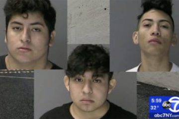 Three MS-13 Members