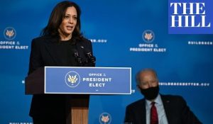 Kamala Harris Starts Pushing Gun Control 'To Keep Our Children Safe'