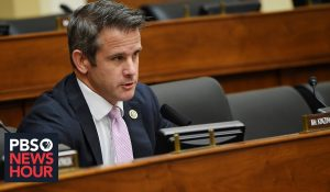 RINO Kinzinger: 'We Didn't Look for Evidence to Impeach Trump'