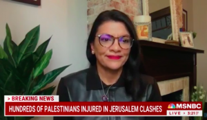 Tlaib Throws Tantrum: U.S. Shouldn't Help Israel — 'They Promote Racism and Dehumanization'